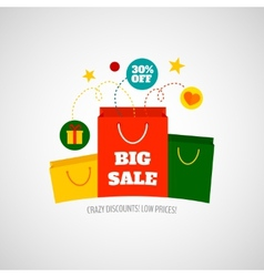 Woman shopping sale icon flat vector