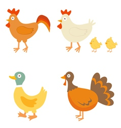 Farm birds vector