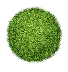 Green grass ball vector