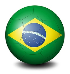 A soccer ball with the flag of brazil vector