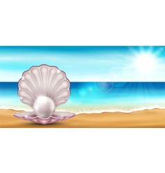 Shell beach vector