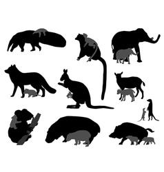 Animal kids vector
