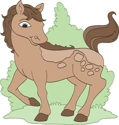 Pretty pony vector