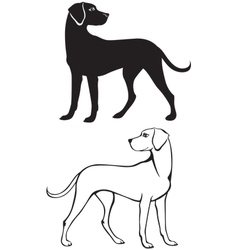Silhouette and contour of dog vector