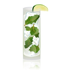 A delicious mojito cocktail vector