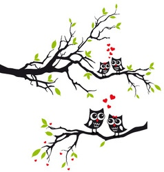 Owls in love on tree vector