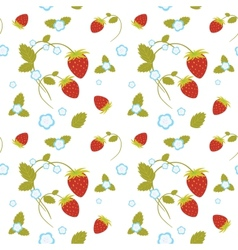 Strawberries seamless vector