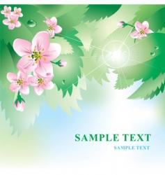 Spring background vector