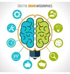 Creative brain infographics vector