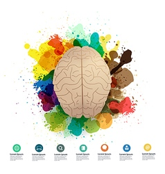 Creativity brain with watercolor splatter vector