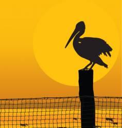Pelican sunset vector
