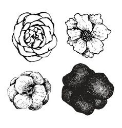 Set of ink pen hand drawn flowers vector