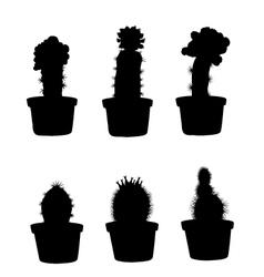 Cactus silhouette set vector