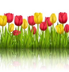 Green grass lawn with tulips sunlight and vector