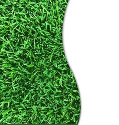 Grass texture poster vector