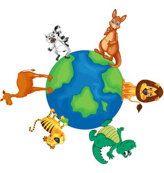 Animals around the world vector