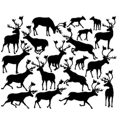 Reindeer or caribou silhouettes vector