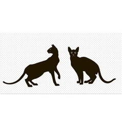 Silhouettes of two oriental cats vector