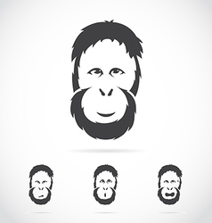 Image of orangutan face vector