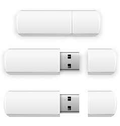 Usb flash vector