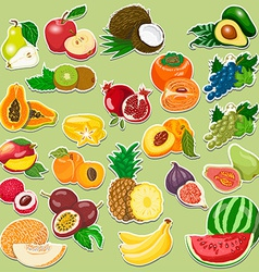 Fruits collection on tags vector
