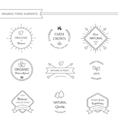 Organic food labels and elements vector