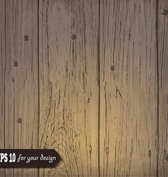 Wooden background for your design vector