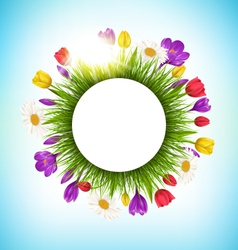Circle frame with grass flowers and sunlight vector
