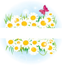 Daisy band with space for copy vector