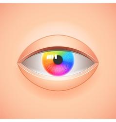 Human eye with rainbow iris background vector