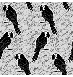 Seamless pattern black and white parrots vector