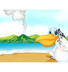 Volcano seagull vector