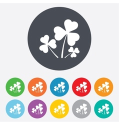 Clovers with three leaves sign st patrick vector