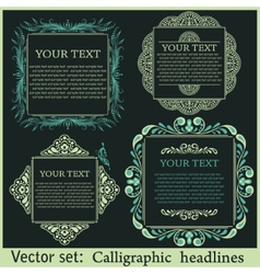 Calligraphic design elements for menu or its vector