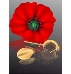 Poppy seeds vector