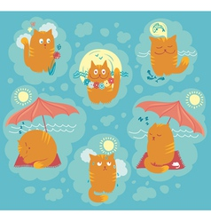 Summer cats vector
