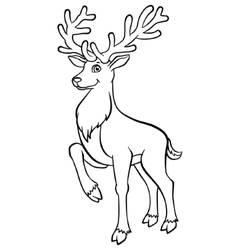Young deer in the forest vector