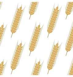 Golden ears of wheat seamless pattern vector