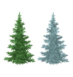 Christmas green and blue spruce fir trees vector