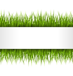 Green grass with frame isolated on white floral vector