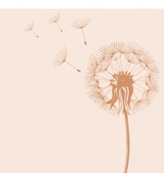 Blow dandelions vector