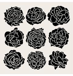 Decorative roses set vector