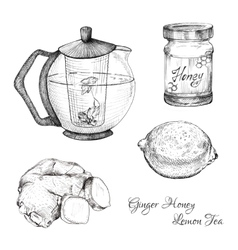 Ginger honey lemon tea ink sketches set vector