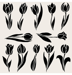 Decorative tulips set vector