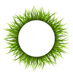 Frame with green grass floral nature background vector