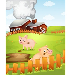 Pigs vector