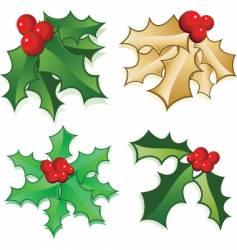 Holly berries vector