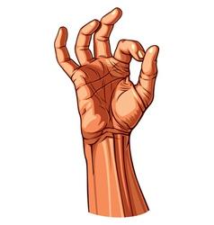 Ok hand gesture vector