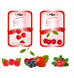 Labels with cherries vector