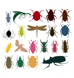Insect icon vector